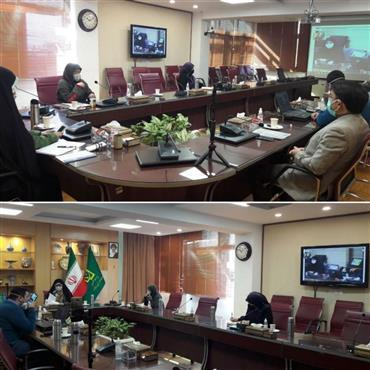آنالیز چگونگی اجرای سند ارتقای شرایط زنان و خانواده استان یزد